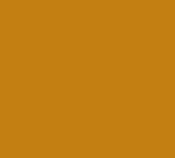 Alligator-Soul-logo-175px